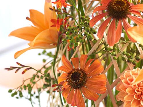 Beispielkapitel: Schnittblumenpflege